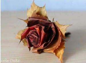 Autumn Leaf Rose
