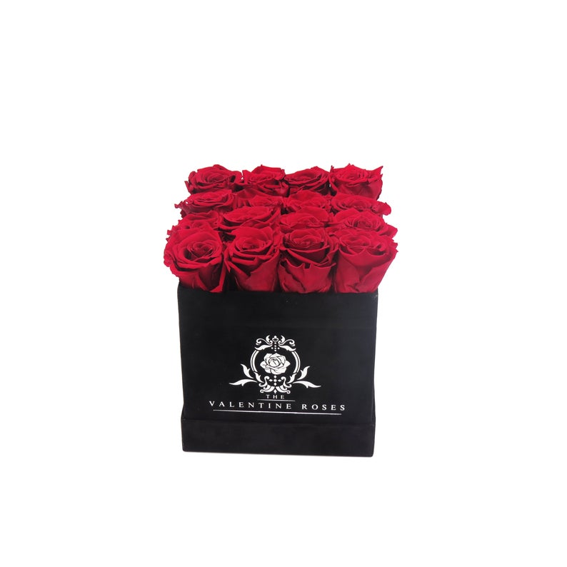 Preserved red roses