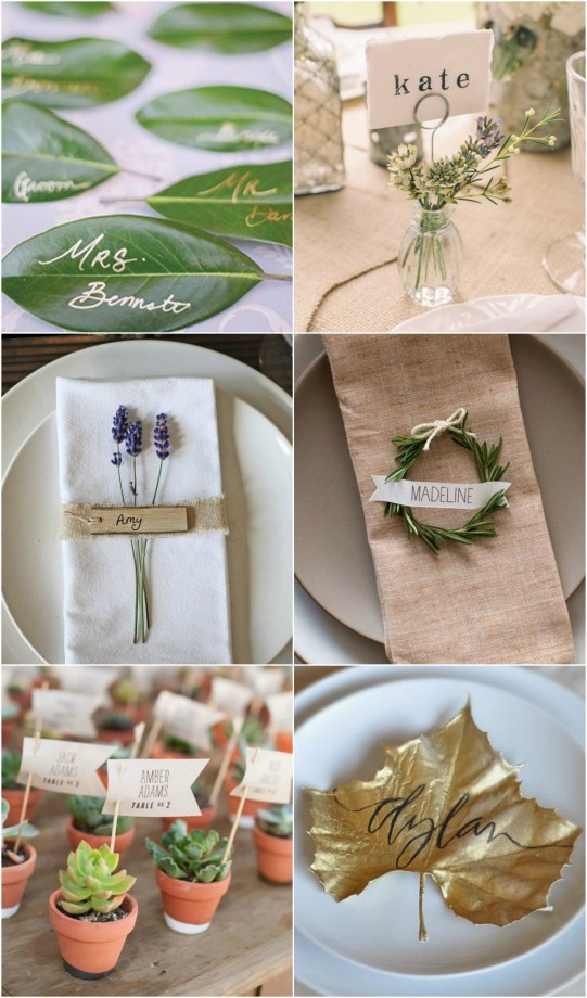 Place Cards Natures Beauty