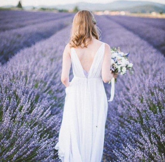 Drifting Through Lilac Lavender Fields