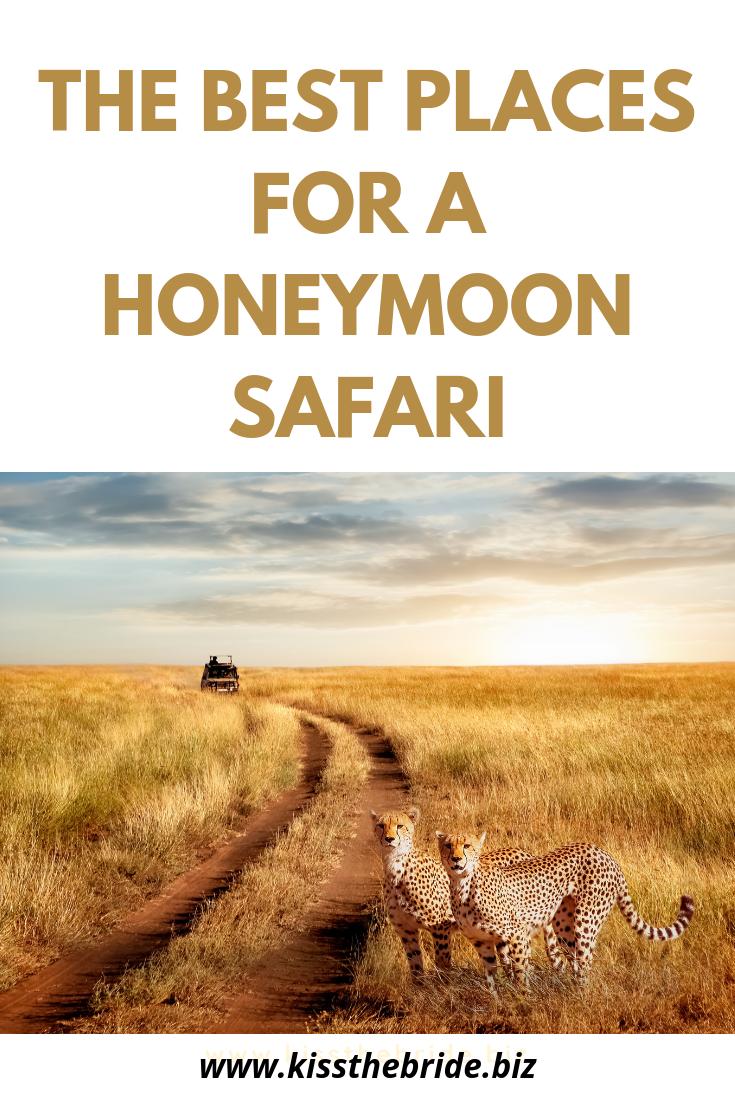 Honeymoon safari in Namibia